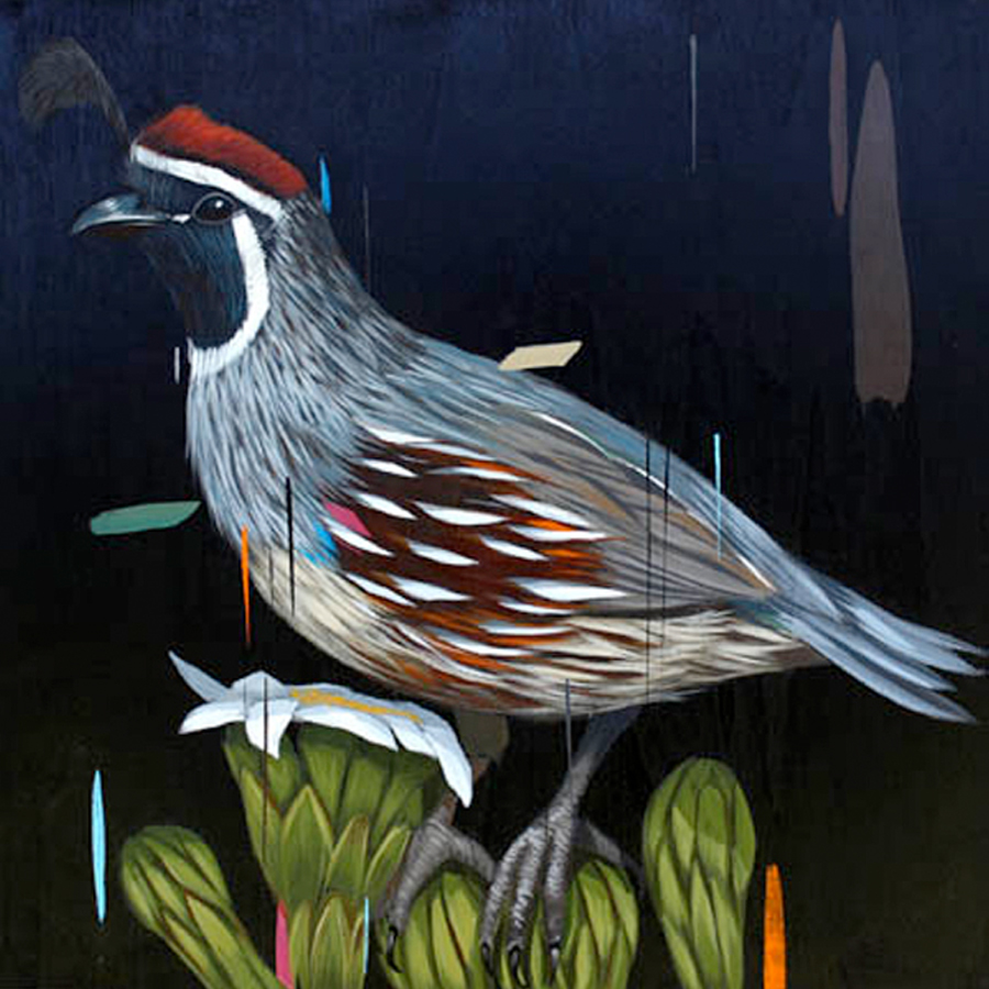 Poise quail painting by Frank Gonzales